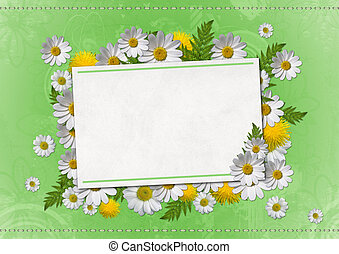 daisy card on green background