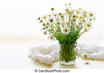 Daisy chamomile flowers in glass jar on white background