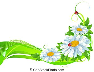 Daisy decoration - decoration with daisy , ladybugs ad water...