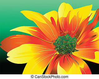 Daisy - Vector graphic illustration of daisy flower for the...