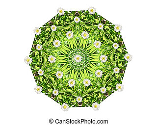 Daisy Field - Abstract floral mandala with daisies