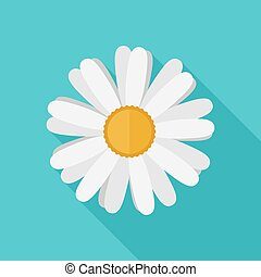 Daisy flower flat icon