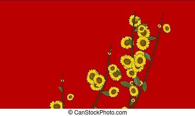 daisy flower & leaves,spring scene.