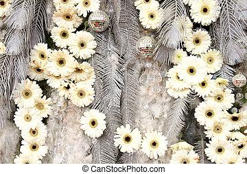 Daisy flower texture