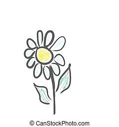 Daisy flower, vector image