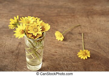 Daisy flowers in the vase