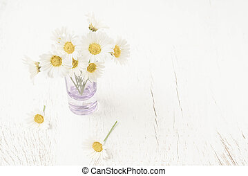 daisy flowers in vase on table with copy space
