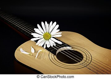 White Daisy On A Country Guitar
