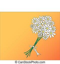 Daisy posy