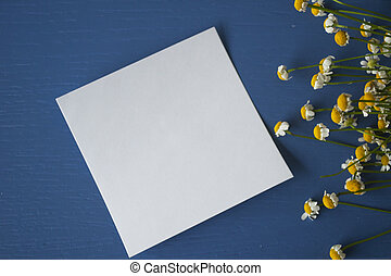 Daisy with a sticker note on a painted blue wooden background