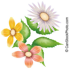 daisy,wild flower - illustration drawing of daisy and color...