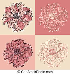 dalia, hand-drawn, fiori