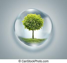 daling van water, met, boompje, binnen