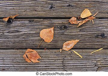 dalingsbladeren, op, wood.