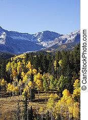 Dallas Divide, Uncompahgre National Forest, Colorado, USA