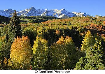 dallas se divide, uncompahgre bosque nacional, colorado
