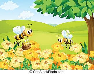 dall'aspetto, cibi, api