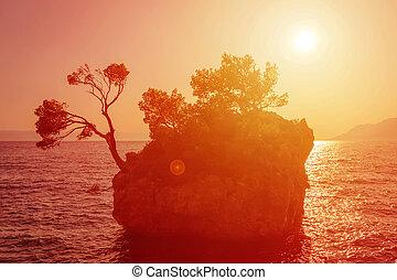 dalmatia, mar, brela, roca, famoso, adriático, croacia,...