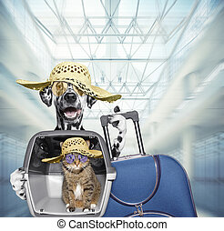 Dalmatian dog and cat wait at the airport with blue suitcase