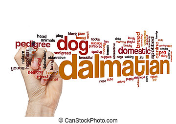 Dalmatian word cloud concept
