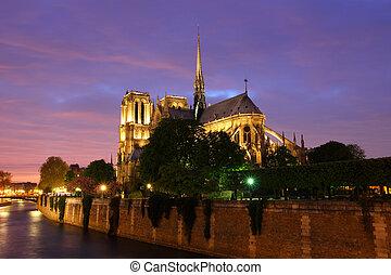 dama, notre, night., paryż
