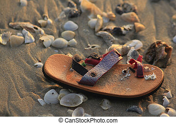 Damaged children shoes and shells on the beach.