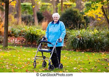 dame, personne agee, automne, parc, marcheur