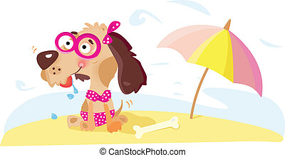 dame, plage, chien
