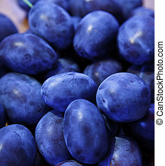 Damson plums - A bunch of fresh damson plums on the table