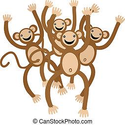 dança, macaco