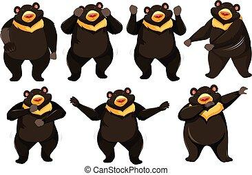 dança, posição, jogo, urso