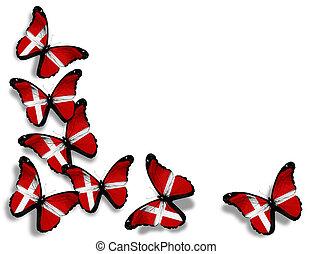 danés, mariposas, aislado, bandera, plano de fondo, blanco