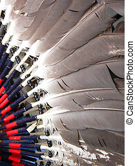 Dance Costume - These feathers are part of a dance costume...