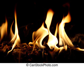 Dancing Flames - A closeup photo of flames against a black...