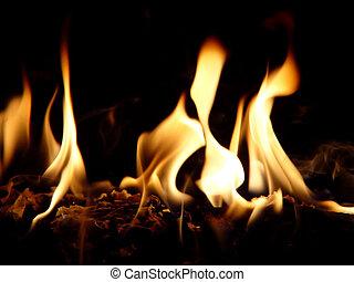 Dancing Flames - A closeup photo of flames against a black ...