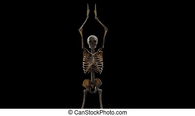 Computer graphics rhythmically dancing three dimensional skeleton on a black background HD 1920x1080