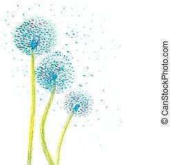 dandelion, abstratos, ilustração, aquarela, experiência., vetorial