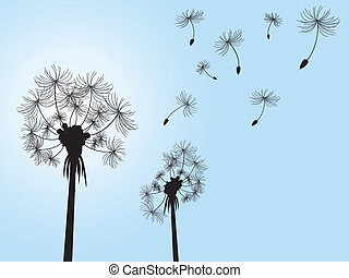 dandelion and its offspings floating into the sky