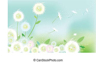 dandelion - the dandelion background