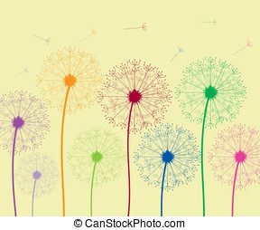 Dandelion colorful - Summer dandelion flowers