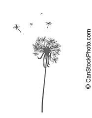 Dandelion. - Dandelion silhouette - vector illustration.