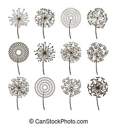 Dandelion flower icons. Dandelions fluffy seeds vector...