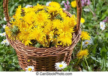 Dandelion Flower in a Basket