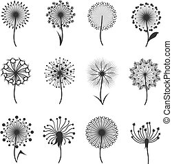 Dandelion flowers with fluffy seeds black floral vector silhouettes isolated on white