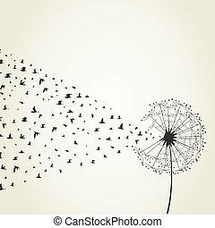 Dandelion - From a dandelion birds take off. A vector...