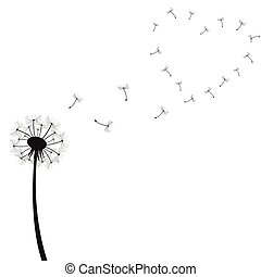 Dandelion Illustration isolated on a white background