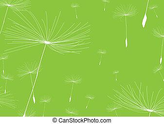 dandelion negative