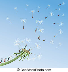 Dandelion on a background blue sky.