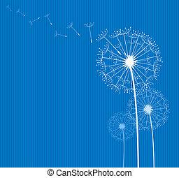 dandelion on blue