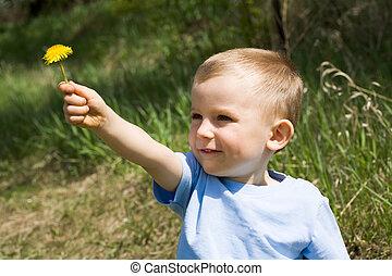 Dandelion present - Cute lad giving yellow dandelion to...